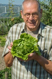 man holding fresh head of lettuce