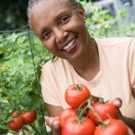 lady holds fresh tomatos